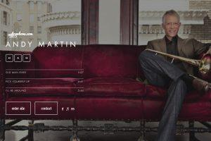 Andy Martin Musician